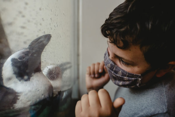 A young boy dances with a penguin at the Academy of Sciences in San Francisco, CA