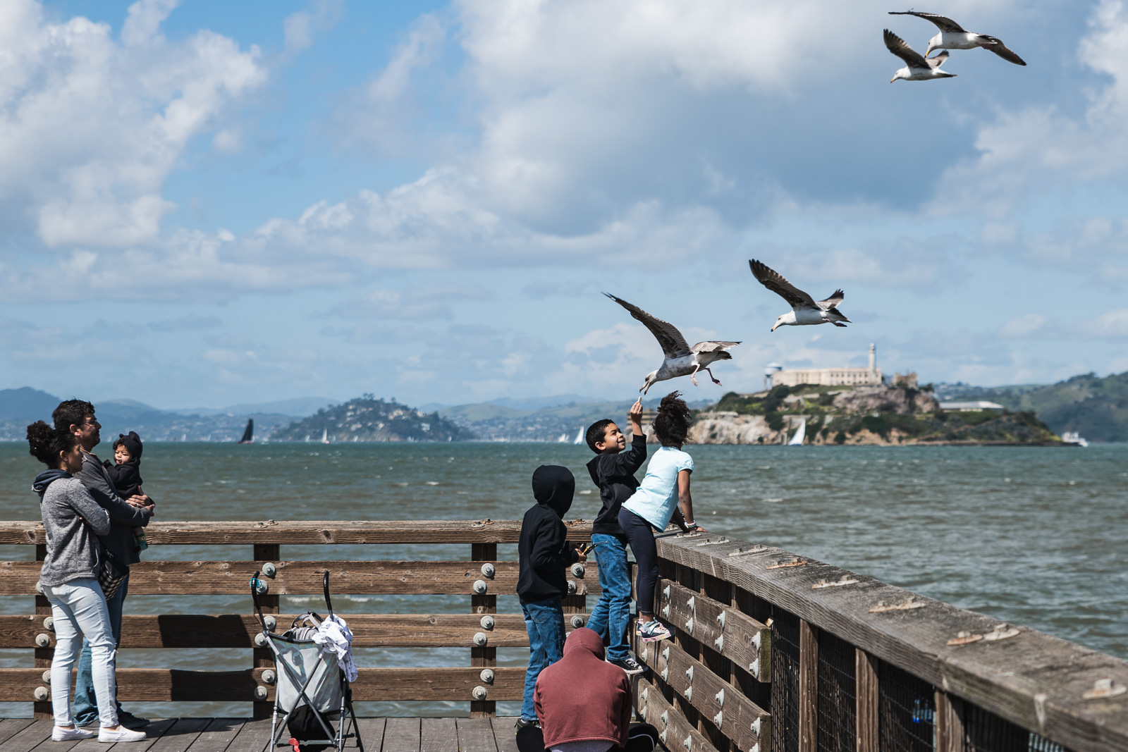 A boy feeds seagulls at fishermans wharf with Alcatraz in the background in San Francisco, CA